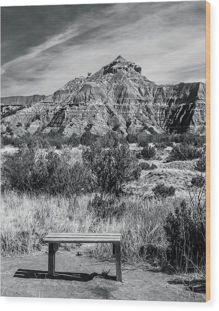 Contemplation Bench Bw Wood Print