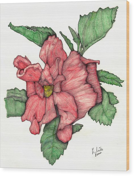 Contour Double Hibiscus Wood Print by Edward Ruth