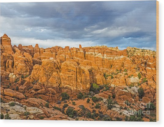 Contrasts In Arches National Park Wood Print