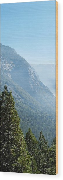 1 Of 4 Controlled Burn Of Yosemite Section Wood Print