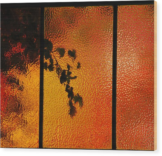Cool Windows 1 Wood Print by Jean Booth
