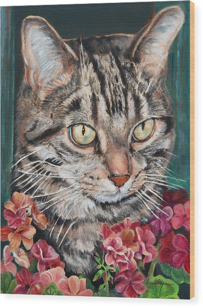 Cooper The Cat Wood Print