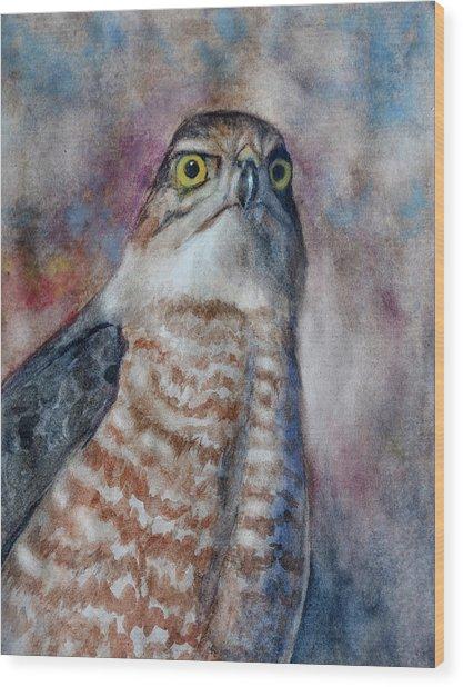 Coopers Hawk Wc Wood Print