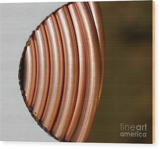 Copper Curves Wood Print