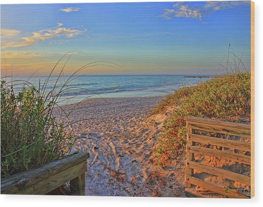 Coquina Beach By H H Photography Of Florida  Wood Print