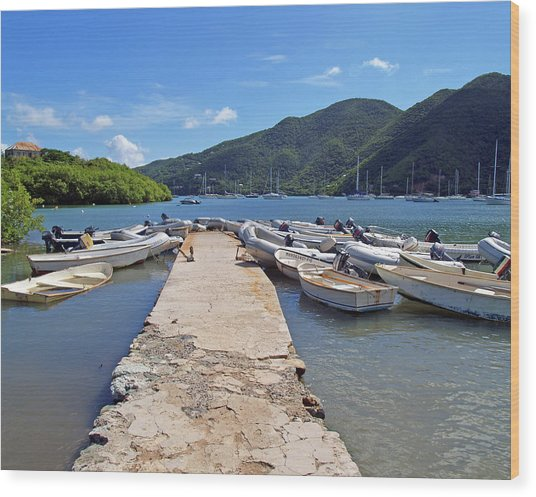 Coral Bay Dinghy Dock Wood Print