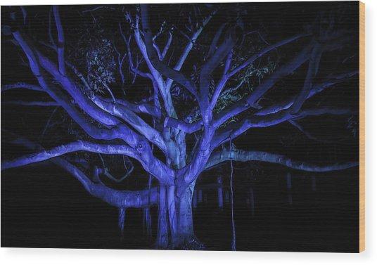 Coral Tree Wood Print