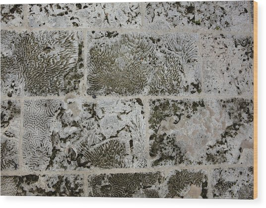 Coral Wall 205 Wood Print