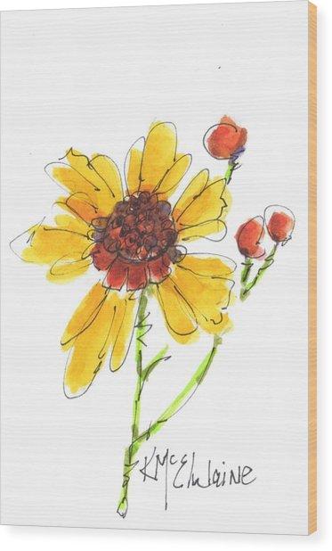 Coreopsis By Kathleen Mcelwaine Wood Print