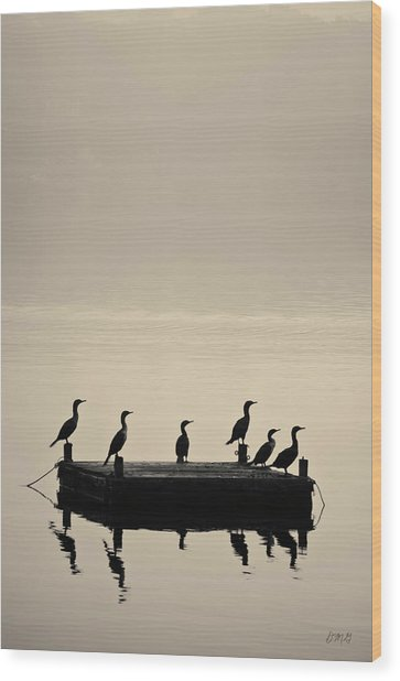 Cormorants And Dock Taunton River No. 2 Wood Print