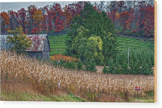 Corn And Ginseng On Poverty Hill Wood Print