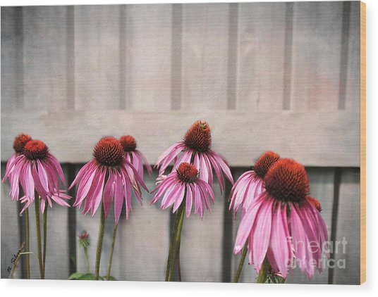 Coneflower Couples Wood Print