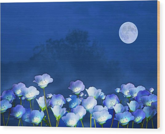 Wood Print featuring the mixed media Cornflowers In The Moonlight by Valerie Anne Kelly