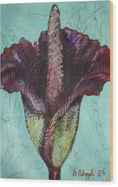 Corpse Flower Wood Print by Dodd Holsapple