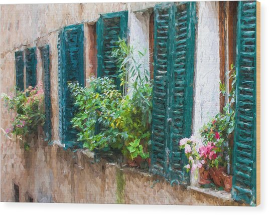 Cortona Window Flowers Wood Print