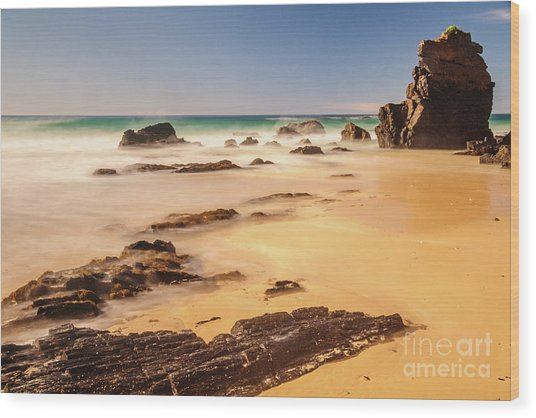 Corunna Point Beach Wood Print