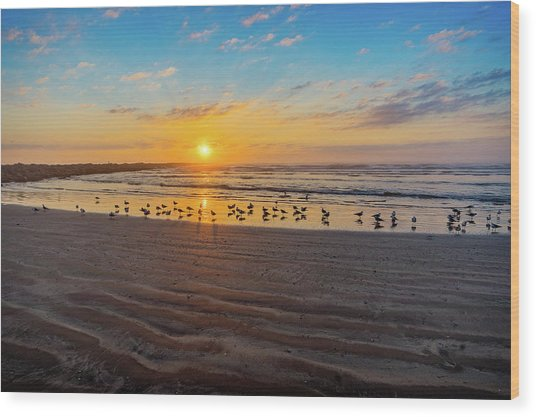 Coastal Sunrise Wood Print