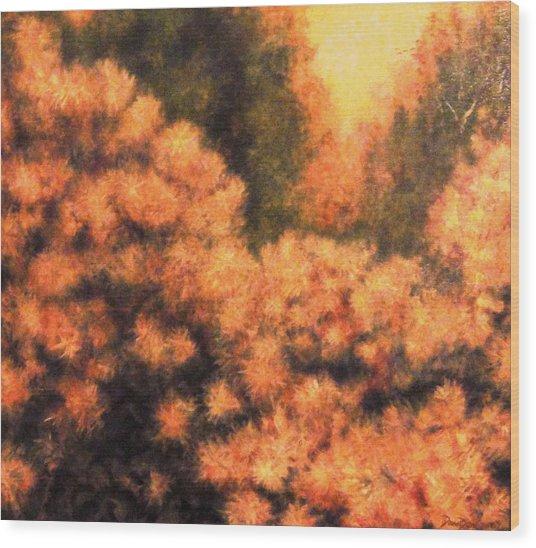 Cotinus Coggygria Wood Print