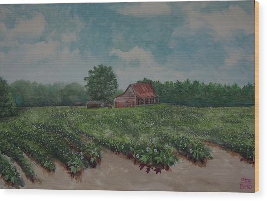 Cotton Be Gone Wood Print