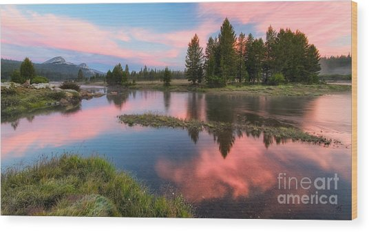Cotton Candy Skies Wood Print