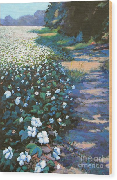 Cotton Field Wood Print