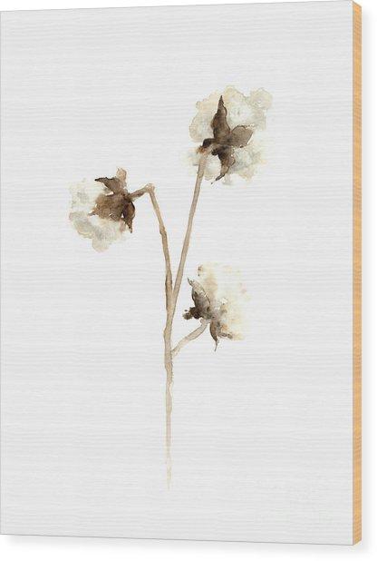 Cotton Fine Art Print Wood Print