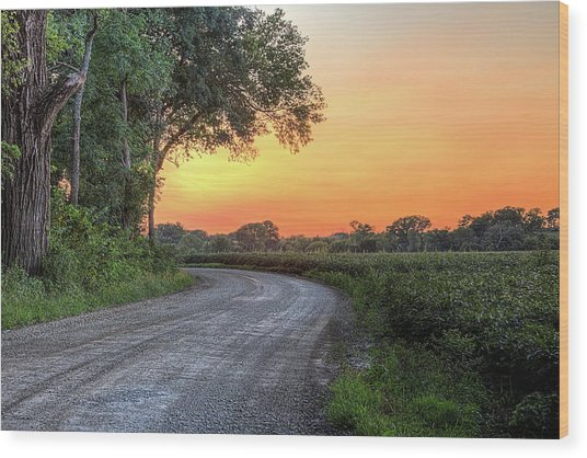 Cottonwood Sunset Wood Print by JC Findley