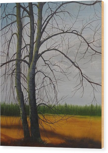 Cottonwoods Wood Print