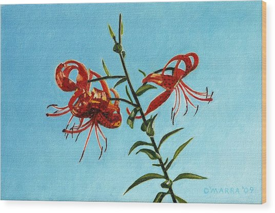 Cotttage Tiger Lilies Wood Print by Allan OMarra
