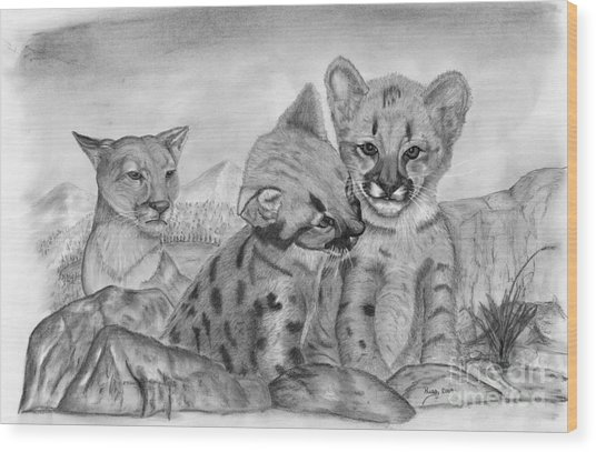 Cougar As She Watches Her Cubs Wood Print by Russ  Smith