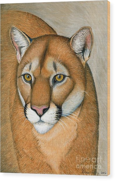 Cougar Portrait Wood Print