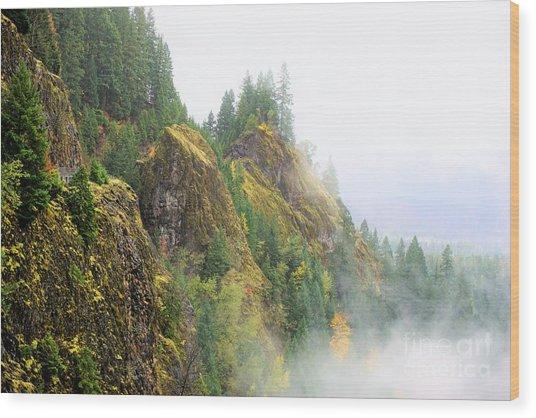 Cougar Reservoir Area Wood Print