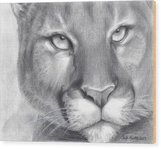 Cougar Spirit Wood Print by Carla Kurt