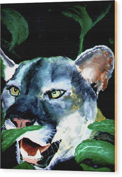 Cougar Wood Print by Stan Hamilton