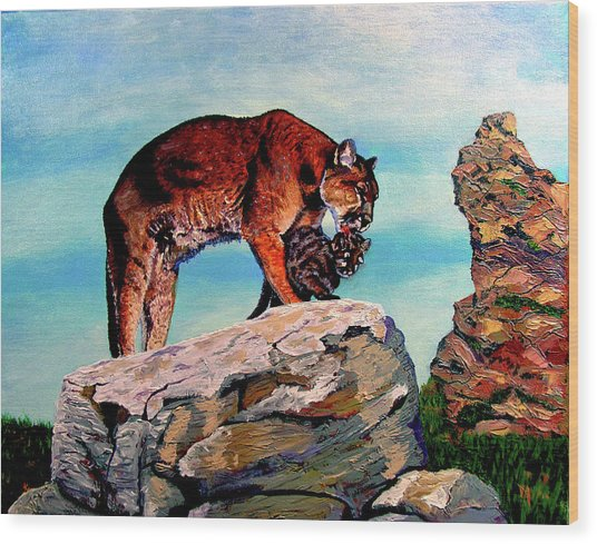 Cougars Mother And Cub Wood Print by Stan Hamilton