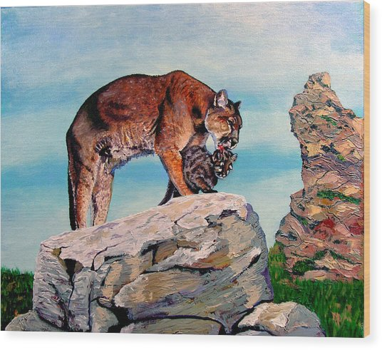 Cougars Wood Print by Stan Hamilton