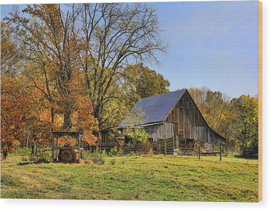 Country Barn And A Pink Flamingo By H H Photography Of Florida Wood Print