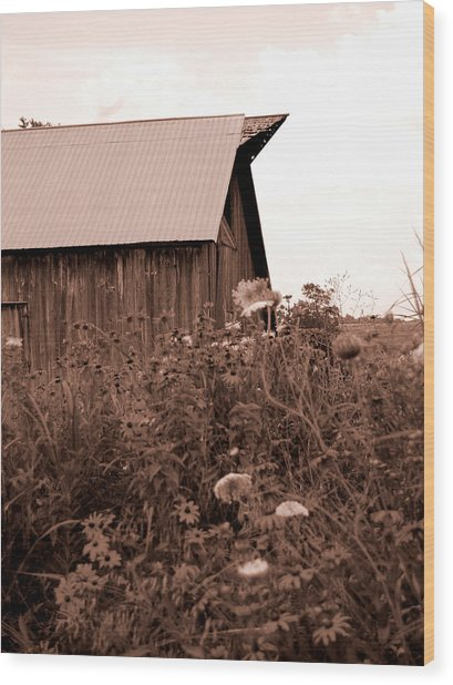 Country Barn Wood Print by Audrey Venute