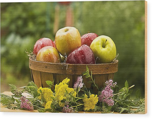 Country Basket Of Apples Wood Print