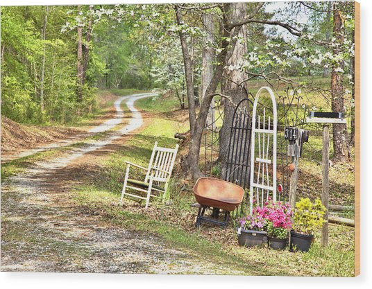 Country Driveway In Springtime Wood Print