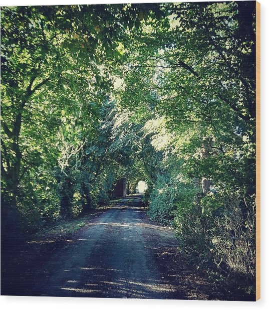 Country Lane, Tree Tunnel Wood Print
