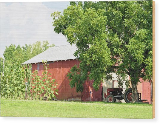 Country Life Wood Print by Jan Amiss Photography