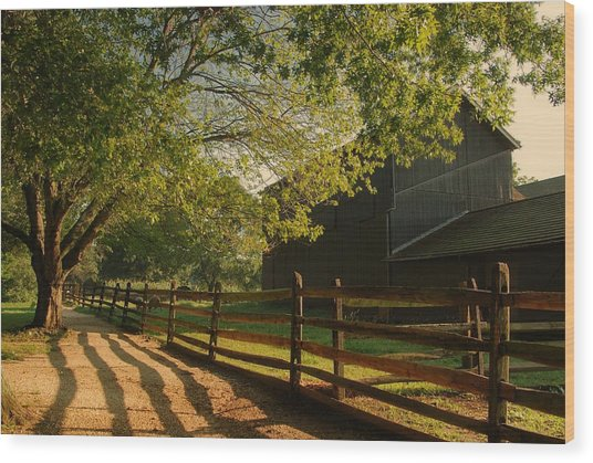 Country Morning - Holmdel Park Wood Print