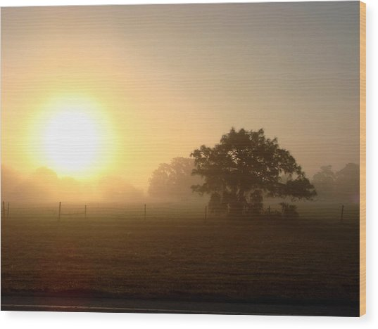 Country Morning Sunrise Wood Print by Kimberly Camacho