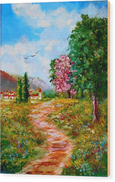 Country Pathway In Greece Wood Print