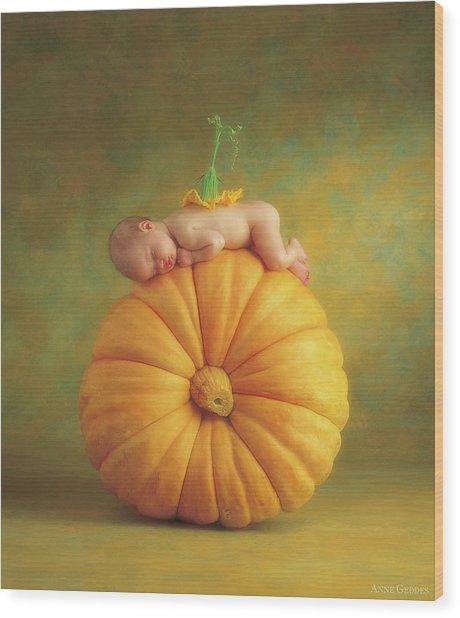 Country Pumpkin Wood Print