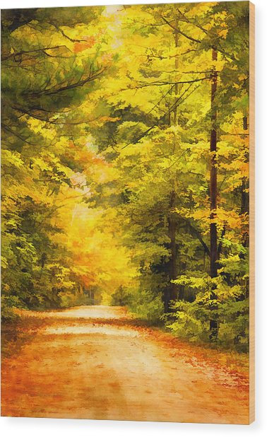 Country Road In Autumn Digital Art Wood Print