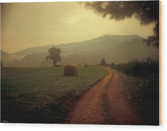 Country Road In The Mountains Wood Print by Molly Dean