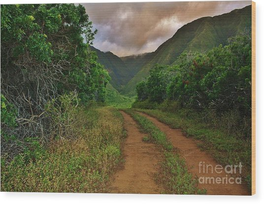 Country Road Kalaupapa, Molokai Wood Print
