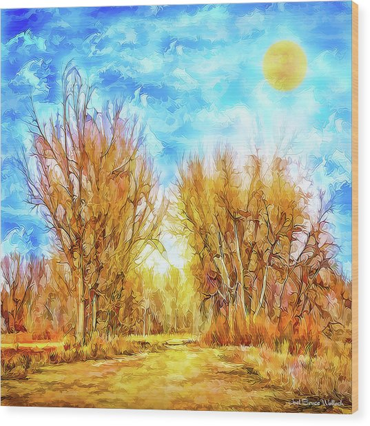 Country Road Wandering Wood Print